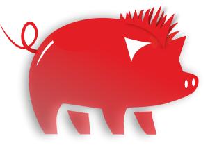 Cheeky Swine